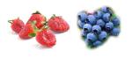 fraise et airelles