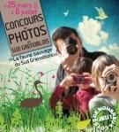 Affiche-concours-photos-sud-grenoblois-271x300